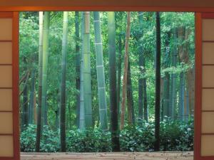 Okochi Sanso, Kyoto, Japan by Rob Tilley