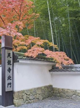 Tenryuji Temple Garden, Sagano, Arashiyama, Kyoto, Japan by Rob Tilley
