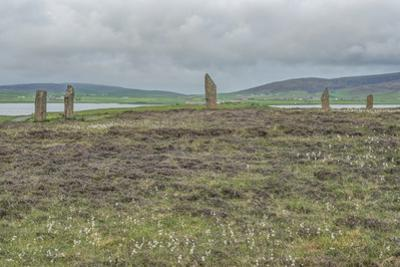 UK, Scotland, Orkney Island, Ring of Brodgar, a ceremonial site dating back to the Neolithic ages e by Rob Tilley