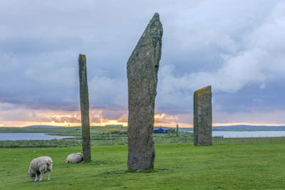 UK, Scotland, Orkney Island. Stones of Stenness, a ceremonial site dating back to the Neolithic age by Rob Tilley