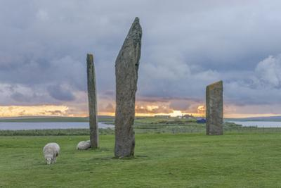 UK, Scotland, Orkney Island, Stones of Stenness, a ceremonial site dating back to the Neolithic age by Rob Tilley
