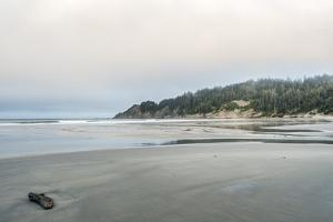 USA, Oregon. Oswald West State Park, Short Sand Beach. by Rob Tilley