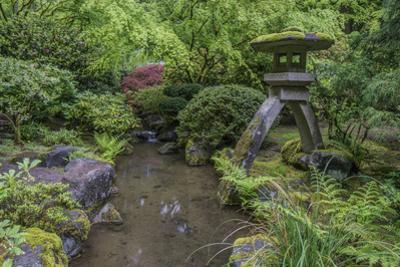 USA, Oregon, Portland, Lantern in a garden. by Rob Tilley
