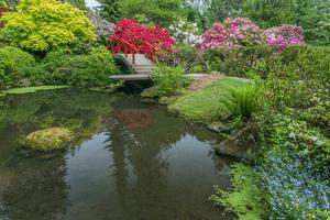 USA, Washington State, Seattle. Kubota Garden. by Rob Tilley