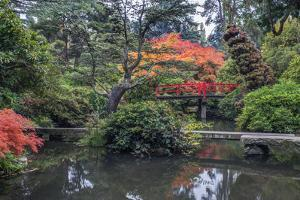 USA, Washington State, Seattle. Kubota Japanese Garden. by Rob Tilley