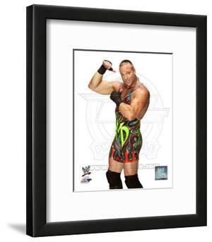 Rob Van Dam 2013 Posed