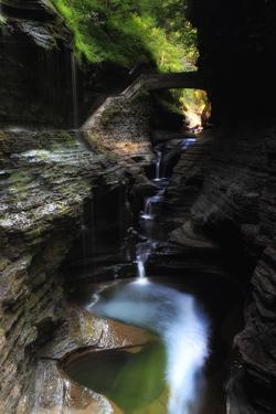 A Waterfall Cuts Through Rock in Watkins Glen State Park, Creating a Canyon by Robbie George