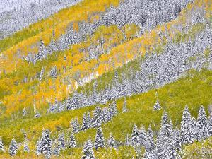 Autumn Meets Winter in the Rocky Mountains by Robbie George