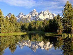 Reflections of the Teton Range in Schwabacher Landing by Robbie George