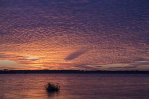 Sunset over Lake Mattamuskeet by Robbie George