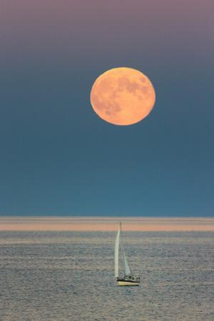 The Harvest Moon Rises over a Sailboat in Casco Bay by Robbie George