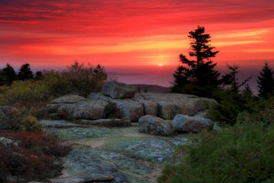 The Rising Sun over Atlantic Ocean and Boulders and Flora Atop Cadillac Mountain