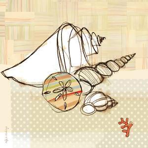 Seaside Shells in Group by Robbin Rawlings