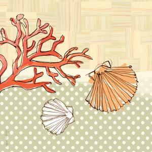 Seaside Shells by Robbin Rawlings