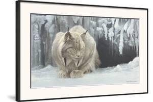 Dozing Lynx by Robert Bateman