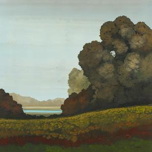 Distant Meadow II by Robert Charon