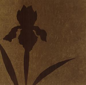 Iris (Metallic) by Robert Charon