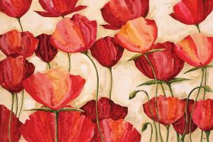 Poppy Field II by Robert Charon