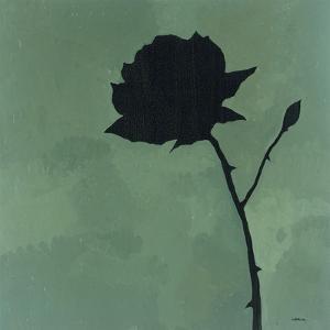 Rose II by Robert Charon