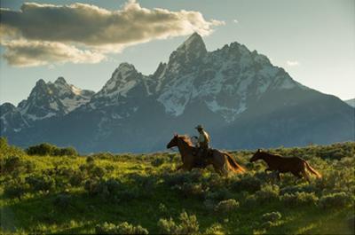 Along the Teton Trail by Robert Dawson