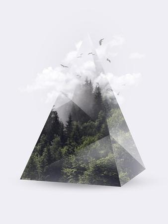 Forest Triangle by Robert Farkas