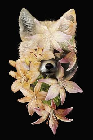 Foxy Flowers by Robert Farkas