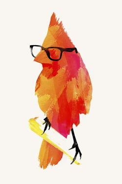 Punk Birdy by Robert Farkas