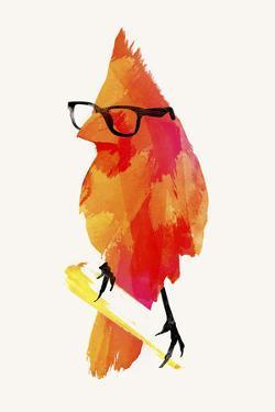 Punk Birdy by Robert Farkas