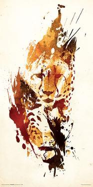 Robert Farkas- Cheetah by Robert Farkas