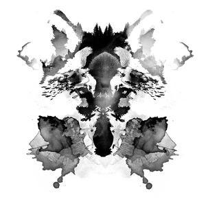 Robert Farkas- Rorschach Fox by Robert Farkas