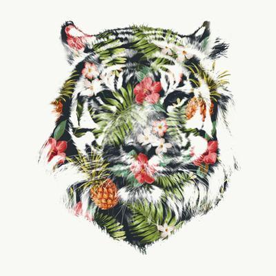 Robert Farkas- Tropical Tiger by Robert Farkas