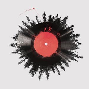 The Vinyl of My Life by Robert Farkas