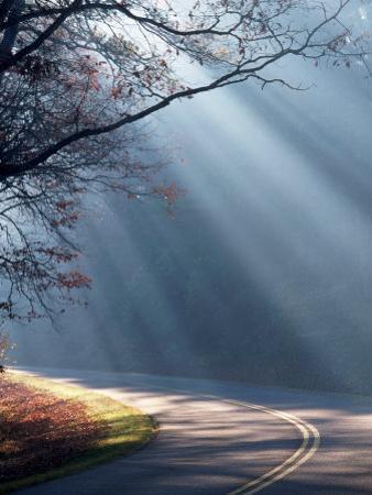 Road on a Misty Morning, Blue Ridge Parkway, NC by Robert Finken