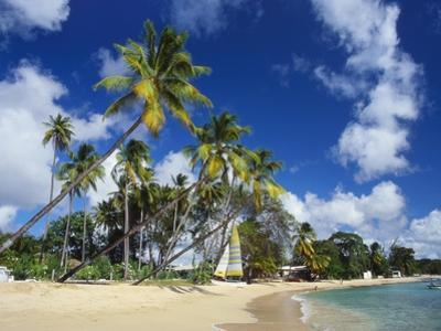 Mullins Beach, St Peter Parish, Barbados, Caribbean by Robert Francis