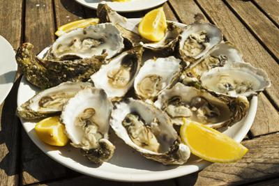 Oysters (huitres) ready to eat, thousands of tons of the shellfish are grown annually here, Ile de  by Robert Francis