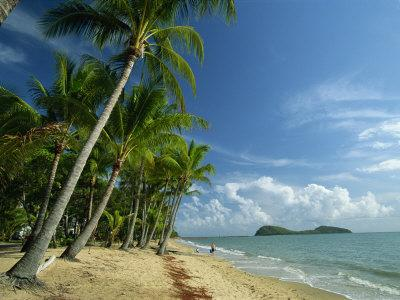 Palm Cove with Double Island Beyond, North of Cairns, Queensland, Australia, Pacific