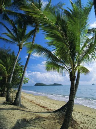 Palm Cove, with Double Island Beyond, North of Cairns, Queensland, Australia by Robert Francis