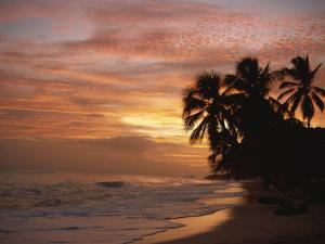 Sunset over Worthing Beach, Christ Church, Barbados, West Indies, Caribbean, Central America by Robert Francis