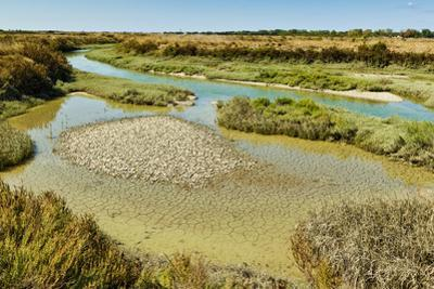 Waterways and cracked mud in the salt marshes of the island's west, near Le Griveau, Ars en Re, Ile by Robert Francis