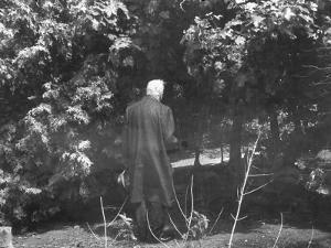 "Robert Frost During His Visit, Standing Near Tree Which Inspired His Poem ""Tree at My Window"""