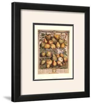 Fruits of the Season, Spring by Robert Furber