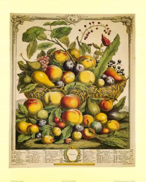 Fruits of the Season Summer by Robert Furber