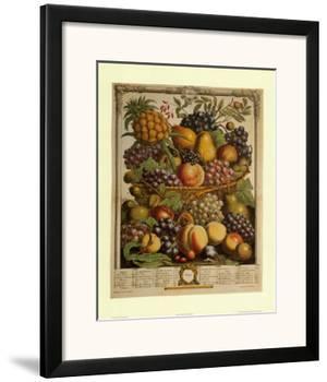 Fruits of the Season Winter by Robert Furber