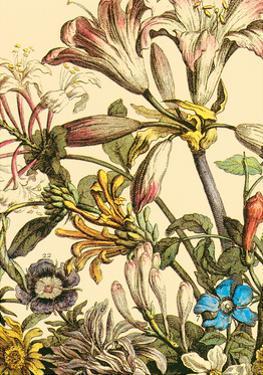 Furber Flowers III - Detail by Robert Furber