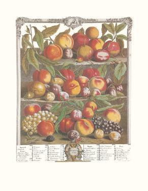 Twelve Months of Fruits, 1732, August by Robert Furber