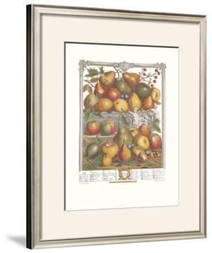Twelve Months of Fruits, 1732, January by Robert Furber