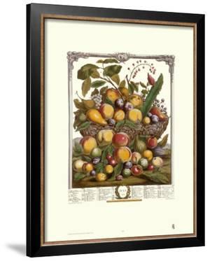 Twelve Months of Fruits, 1732, July by Robert Furber
