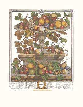 Twelve Months of Fruits, 1732, June by Robert Furber