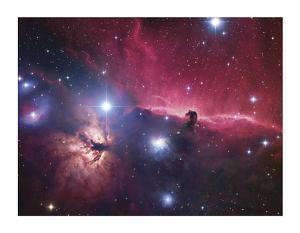 Horsehead Nebula by Robert Gendler