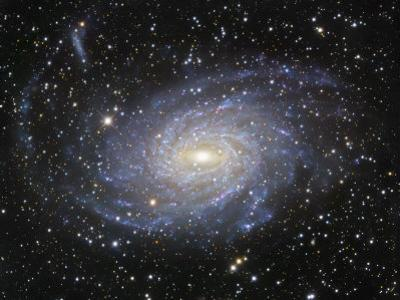 Ngc 6744 Spiral Galaxy in Pavo